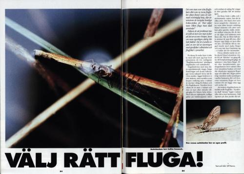 1992 Normark43