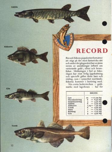 ABU Napp och nytt 1958 blad14