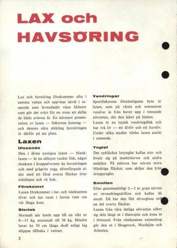 Arjon Napp och nytt 1962 Blad004