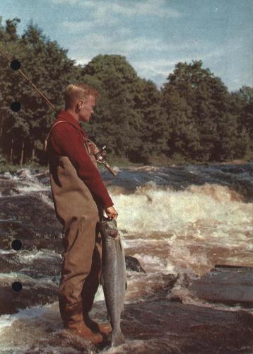 Arjon Napp och nytt 1962 Blad005