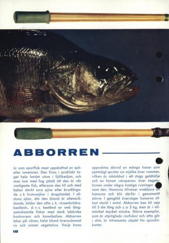 Fisketur med Arjon 1965 Sid18