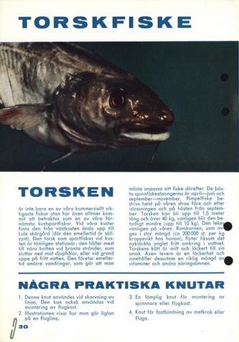Fisketur med Arjon 1965 Sid30
