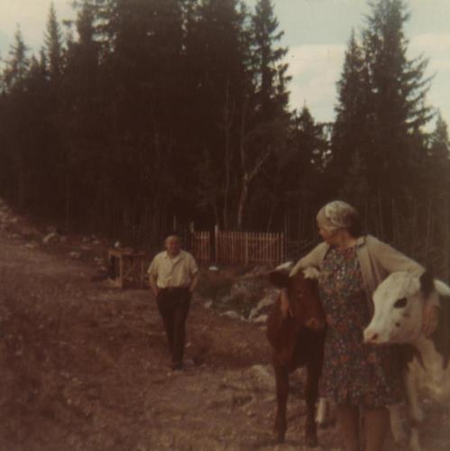 Pellanna-karl och Hära Ingeborg