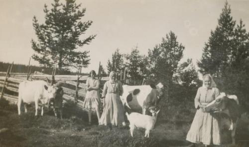 Skol Nils album 1927 Lösning kor Gammalselen Tatus Richard Signe Ferm Skärp Britta Tros Karin