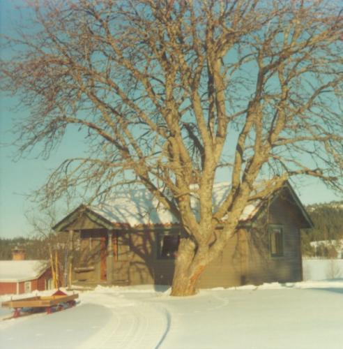Vinter Älgsjöselen 1975