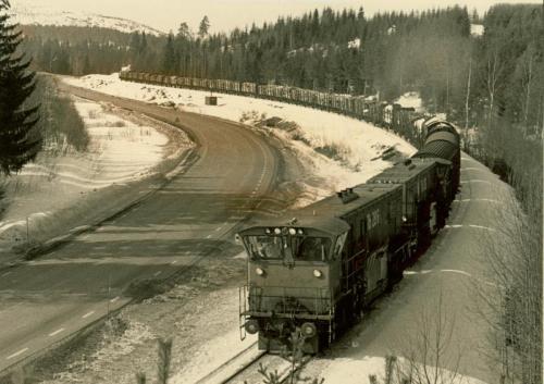 1980-mitt Timmertåg2 Kärleksudden vid Lugnet. Foto Åke Jonsson