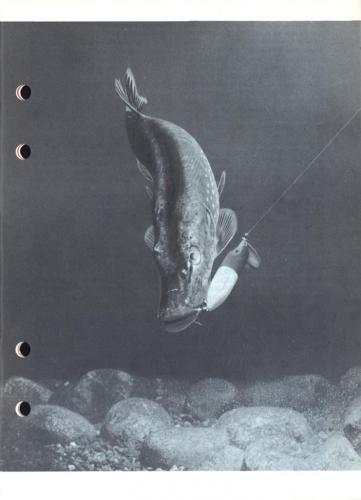 Arjon Napp och nytt 1961 Blad005