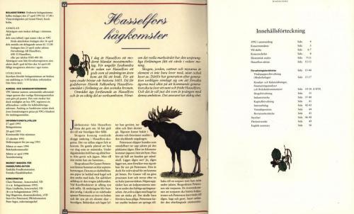 Hasselfors 02